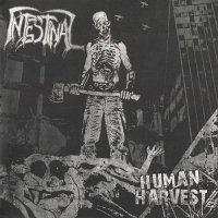 Intestinal-Human Harvest