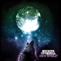Hurts Like Hell — Don\'t Cry Wolf (2017)