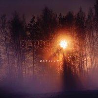 Senses Fail — Renacer (2013)