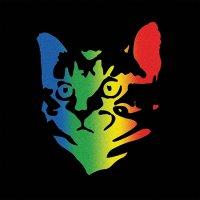 Whoopie Cat-Whoopie Cat