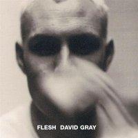 David Gray-Flesh