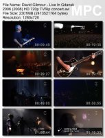 David Gilmour — Live In Gdansk (BDRip HD 720p) (2006)