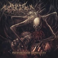 Rectal Collapse — Penetrating In Your Abdominal Cavity (2012)