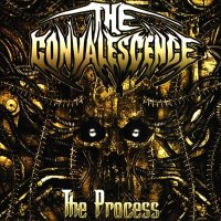 The Convalescence-The Process
