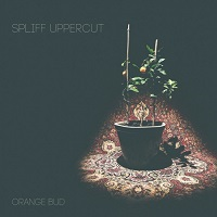 Spliff Uppercut-Orange Bud