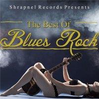 VA-Shrapnel Records Presents: The Best of Blues Rock