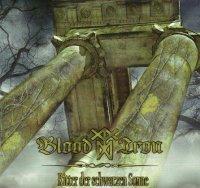 Blood & Iron — Ritter Der Schwarzen Sonne (2010)