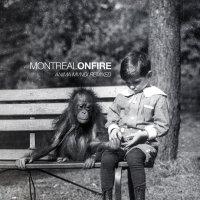 Montreal On Fire — Anima Mvndi Remixed (2013)