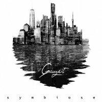 Grauzeit-Symbiose