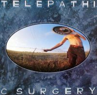 The Flaming Lips-Telepathic Surgery