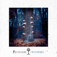 I See Stars-Treehouse