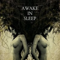 Awake In Sleep — Awake In Sleep (2011)