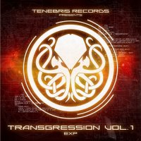 VA-Transgression vol. 1: Exp