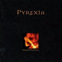 Pyrexia-System Of The Animal