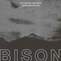 Bison-You Are Not The Ocean You Are The Patient