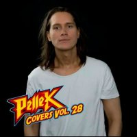 Pellek — Covers, Vol. 28 (2017)