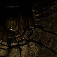 Black Shape Of Nexus & Kodiak — Split (2010)