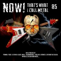 Various Artists-NOW! That\'s What I Call Metal 85