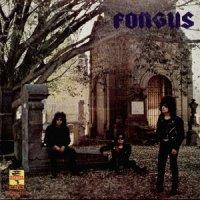 Fongus-Sobredosis de Metal