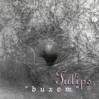 Tulips — Buxom (1992)