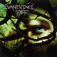 Evanescence-Anywhere but Home (Live)