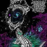 Imbibed By The Quasar-Demo 2014