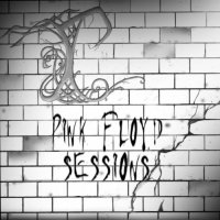 Therein-Pink Floyd Sessions (A Pink Floyd medley for your ears)
