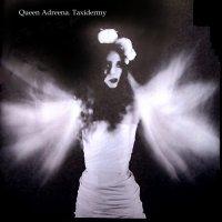 Queen Adreena — Taxidermy (2000)