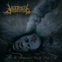 Vermis Antecessor-The Subliminal Way Of Flesh