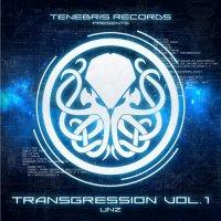 VA-Transgression vol. 1: Unz
