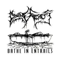 Dying Fetus-Bathe In Entrails