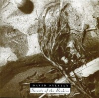 David Sylvian-Secrets Of The Beehive [Reissue 2006]