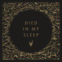 Demon Hunter-Died in My Sleep