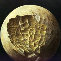 Semantic Vacuum Hypothesis — Mars Can Wait (2017)