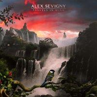 Alex Sevigny-Travels In Mind