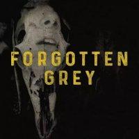 Forgotten Grey — Forgotten Grey (2017)