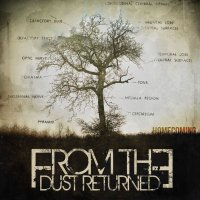 From The Dust Returned-Homecoming