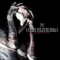 VA-I Dare You To Be Real - A Tribute to Dark & Cold Sounds