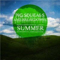 Pig Squeals And Breakdowns-Summer