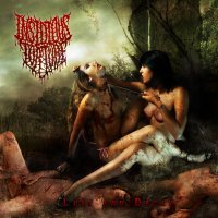 Insidious Torture-Lust And Decay