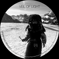 Veil Of Light — Ursprung Remixed (2017)