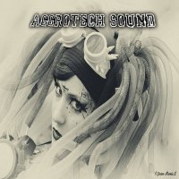 VA-Aggrotech Sound