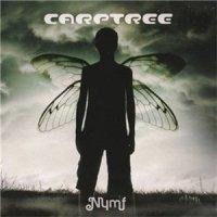 Carptree-Nymf