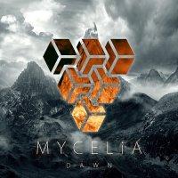 Mycelia-Dawn