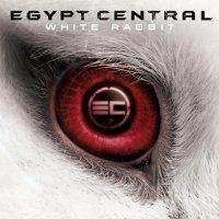 Egypt Central-White Rabbit