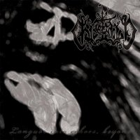 Chaos Moon-Languor Into Echoes, Beyond