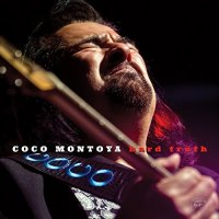 Coco Montoya-Hard Truth