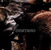 Orotoro-2  (Limited Edition)