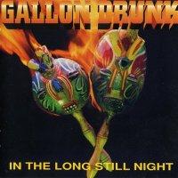 Gallon Drunk-In The Long Still Night