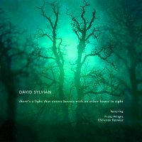David Sylvian-there's a light that enters houses with no other house in sight